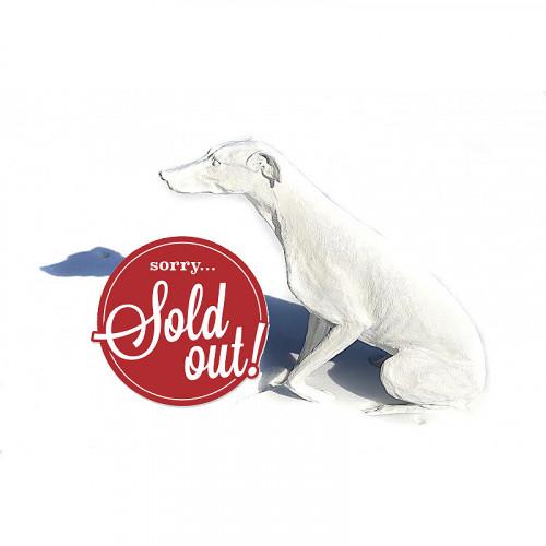 Weißer Windhund